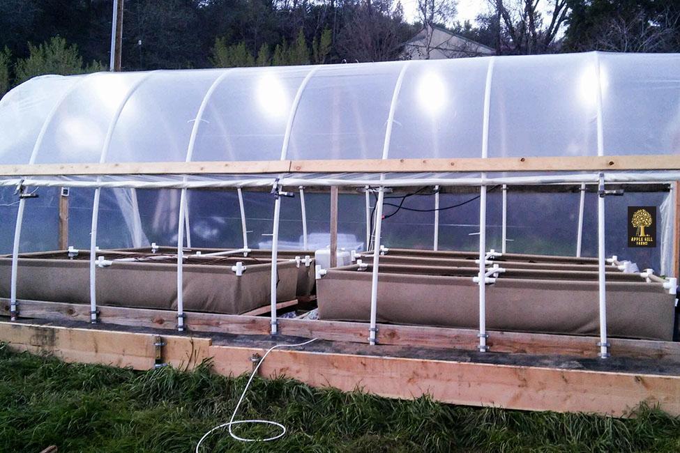 Raised Beds - Cannabis Fabric Pots