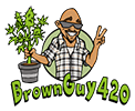 BrownGuy420
