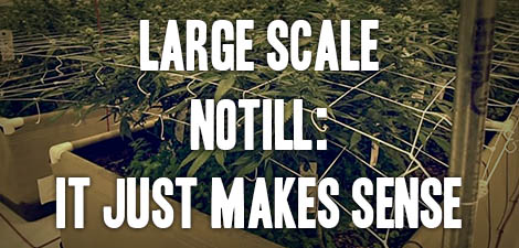 Large Scale Notill: It Just Makes Sense