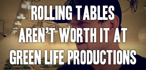 Rolling Tables Aren't Worth It at Green Life Productions