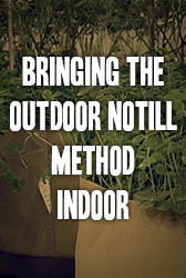 Bringing the Outdoor Notill Method Indoor