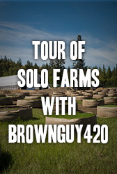 Tour of Solo Farms With Brownguy420